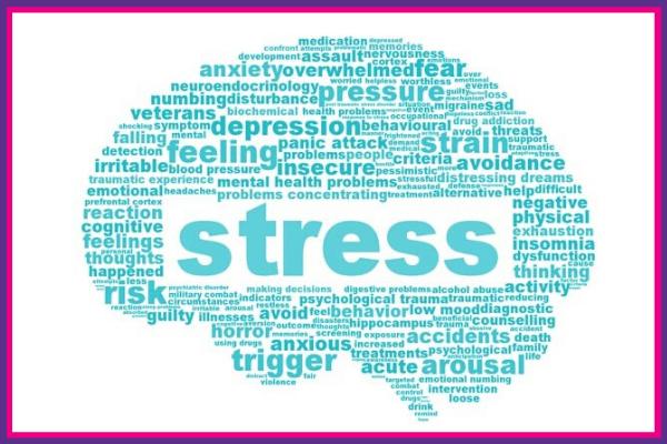 Chris Barton - Stress